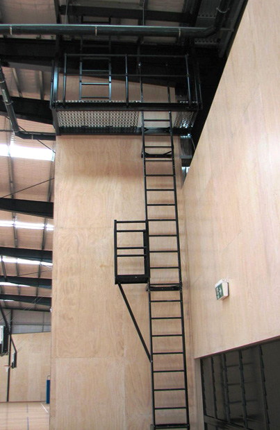 powder-coated-ladder-with-vertical-fall-arrest-device-installed